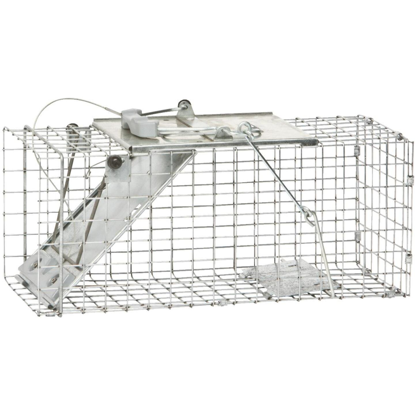 Havahart Easy Set Galvanized Steel 17 In. Live Squirrel Trap Image 2